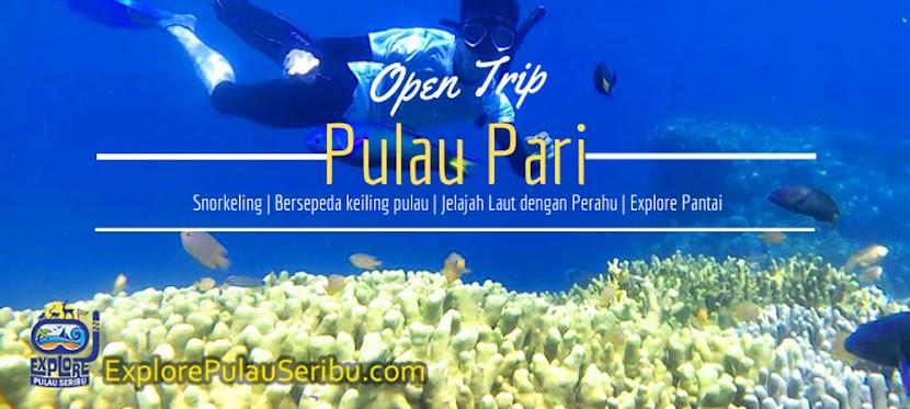 Paket Open Trip dan Private Trip Pulau Pari