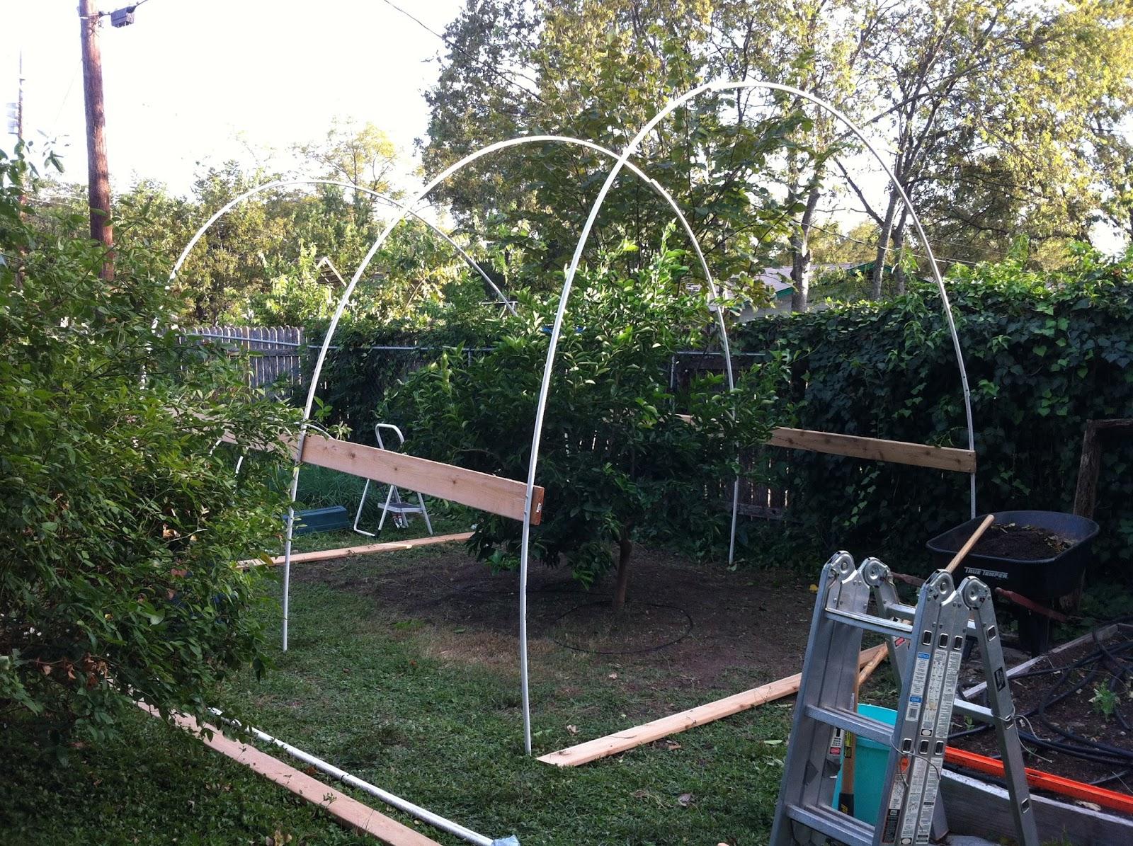 The Shovel-Ready Garden: January 2016
