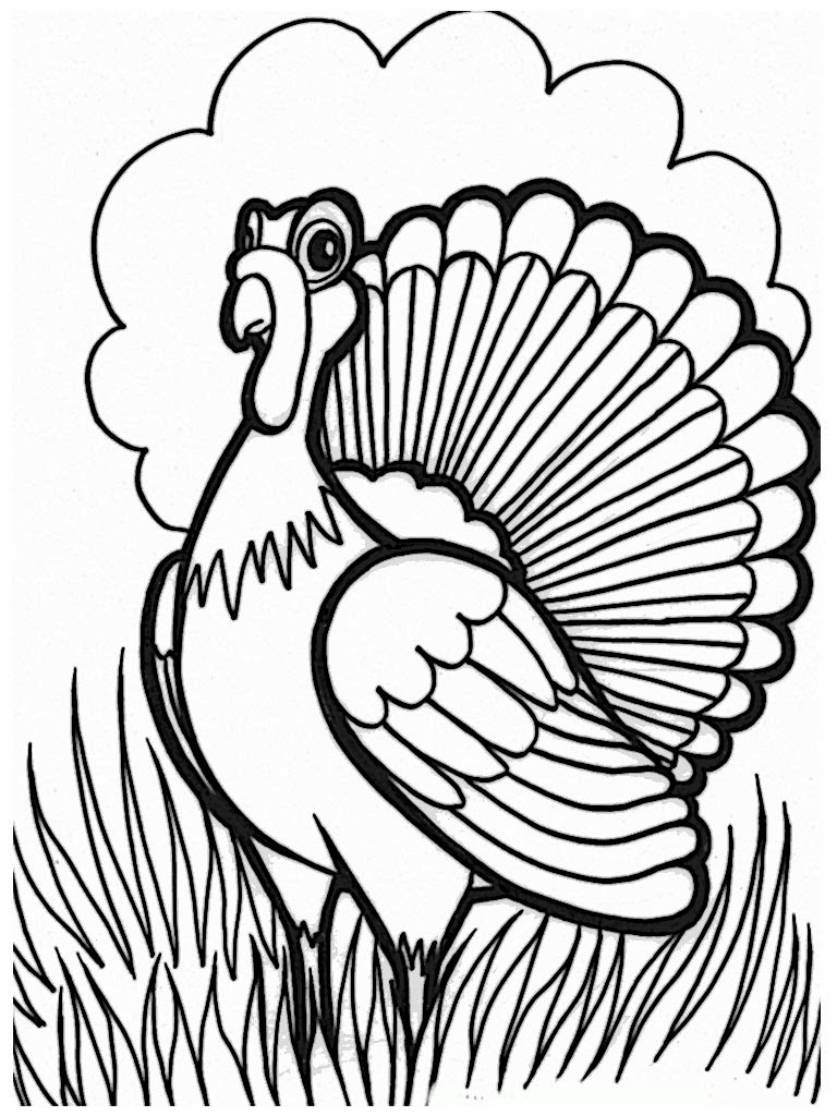 Printable Thanksgiving Coloring Pages Realistic Coloring