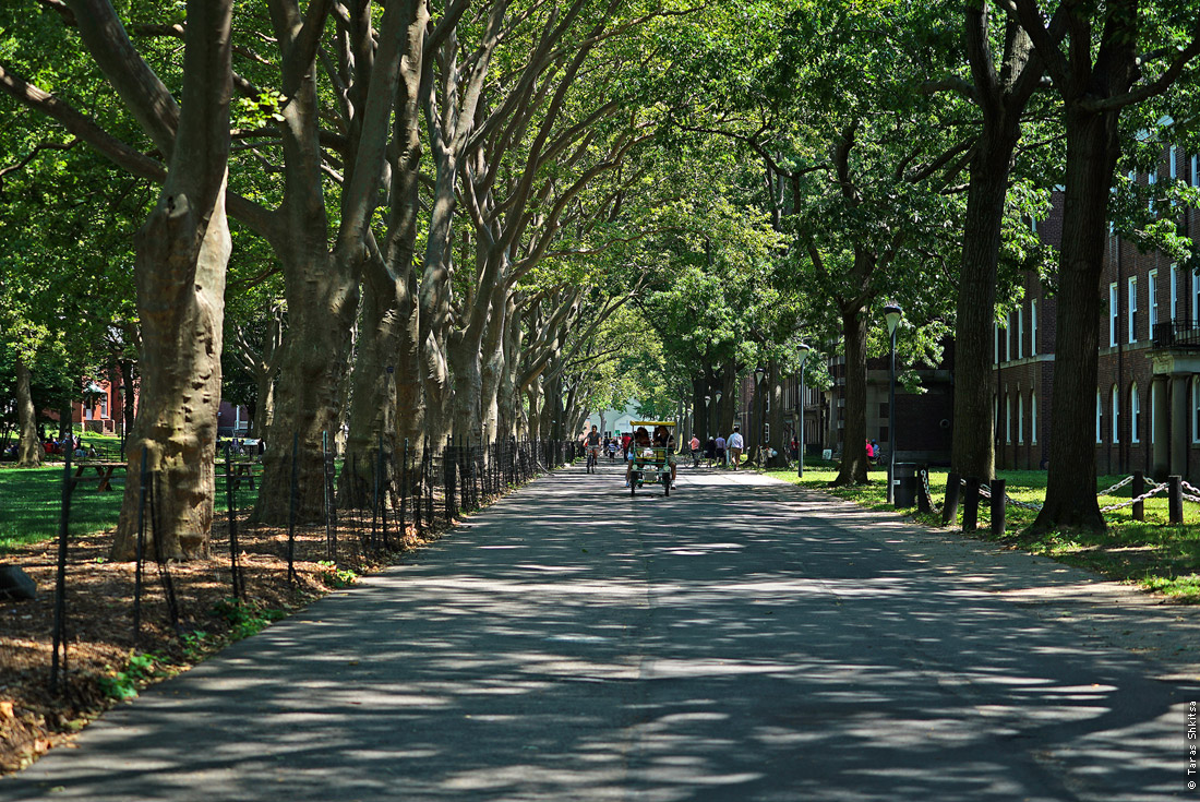 Clayton Rd. Governors Island, New York