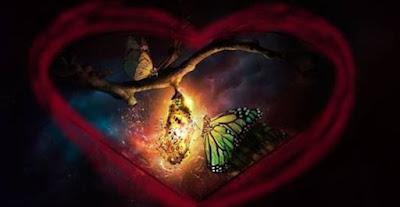 A Beautiful Butterfly by Deborah Waldron Fry