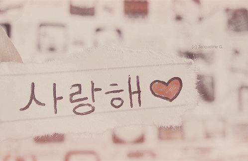 Watasiwanaya S Area Kamus Cinta Dalam Bahasa Korea