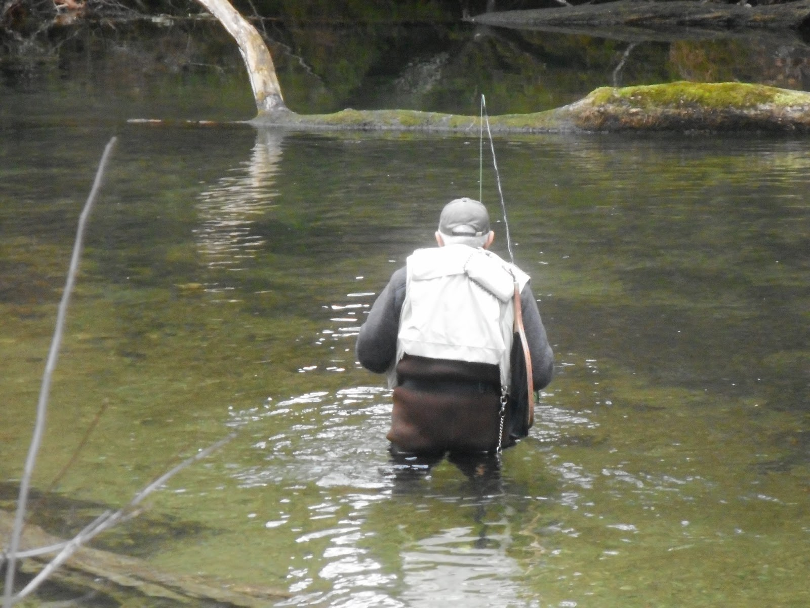 Millers swift ware and eb fly fishing forum welcome to for Fly fishing forum