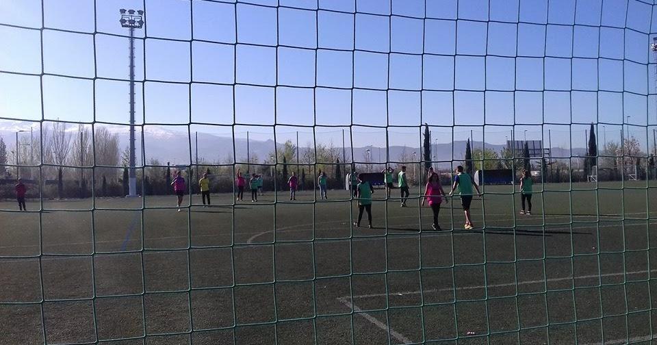 EDUCACIÓN FÍSICA Y DEPORTES: Gimnasio WE, Granada (03/04/2017)