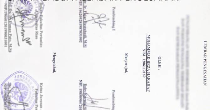 Contoh Pembuatan Lembar Pengesahan Laporan Skripsi Format Doc Kosngosan