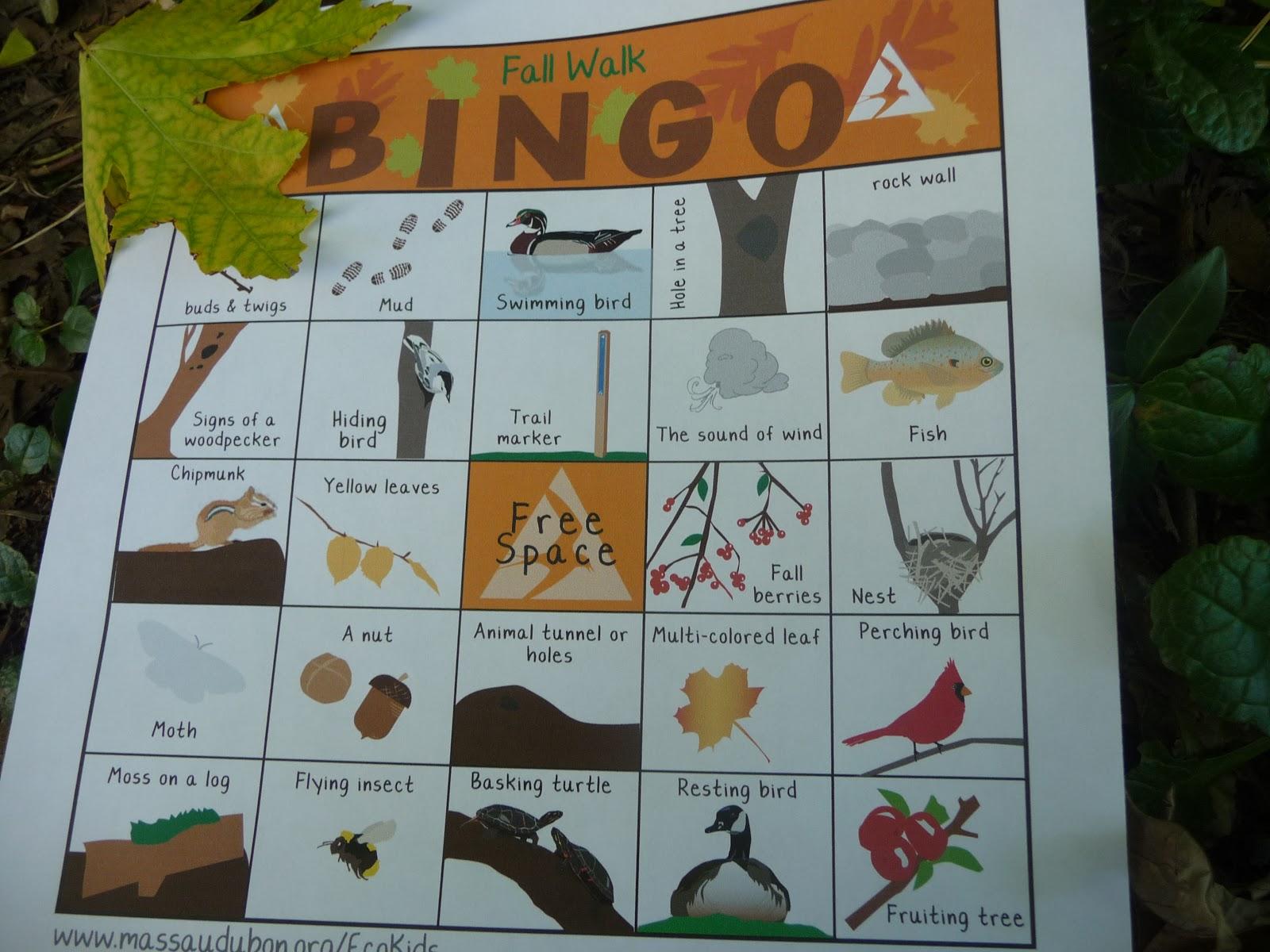 Fall Hike Bingo A Fun Way To Keep Kids On The Trail
