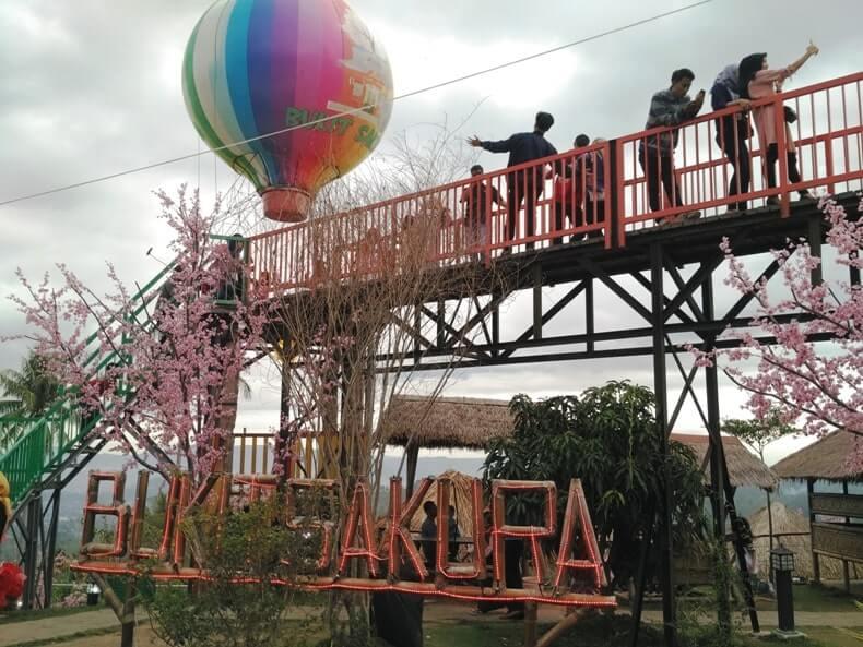 wisata ngehits kekinian taman sakura lampung