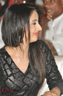 Happy Birthday Telugu Movie Audio Launch  0004.jpg