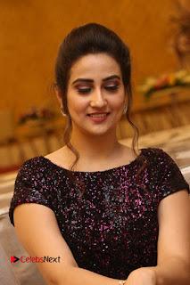 Actress Anchor Manjusha Pictures at Babu Bangaram Success Meet  0079.JPG