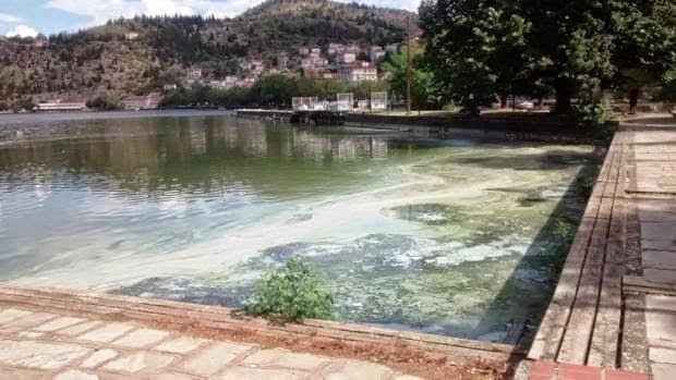 ΕΝ. ΔΗΜΟ.: Η λίμνη της Καστοριάς πνίγεται