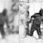 Investigadores Captan por Primera vez al Yeti en Bosque Ruso