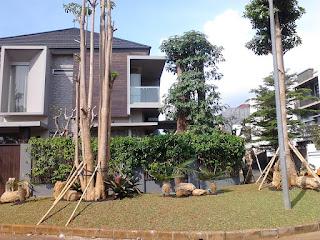 Galeri Taman - Tukang Taman Surabaya 79