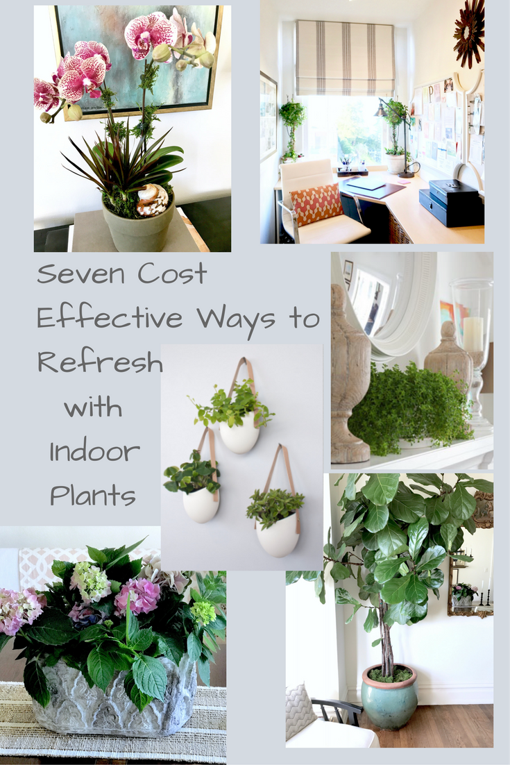 7 Ways to Refresh With Indoor Plants (and Some Cool Fashion