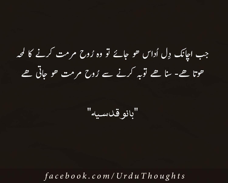 10 best urdu images beautiful quotes for life urdu for Bano qudsia sayings