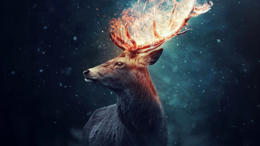 Deer, Flaming, Horn, Digital Art, 4K, #4.555