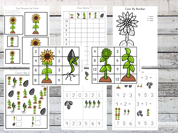spring flower worksheet for preschool, prek,  kindergarten, first grade