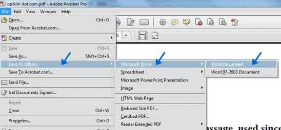 Simpan PDF ke Word