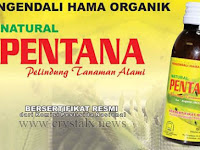 Natural Pentana Obat Pengendali Hama Alami