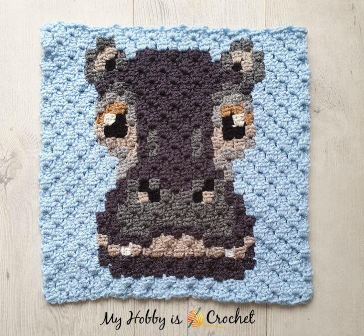 Hippo C2C Square