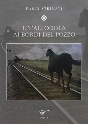 http://www.amazon.it/Unallodola-ai-bordi-del-pozzo/dp/8876065911/ref=sr_1_2/275-0422858-5324417?s=books&ie=UTF8&qid=1455804957&sr=1-2