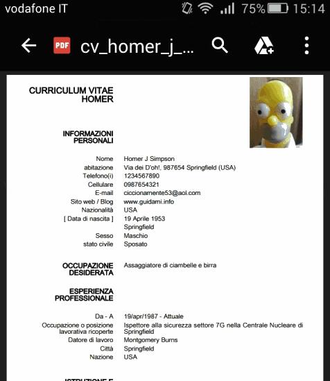 Antepirma CV creato con l'app Curriculum Europeo BASIC per Android