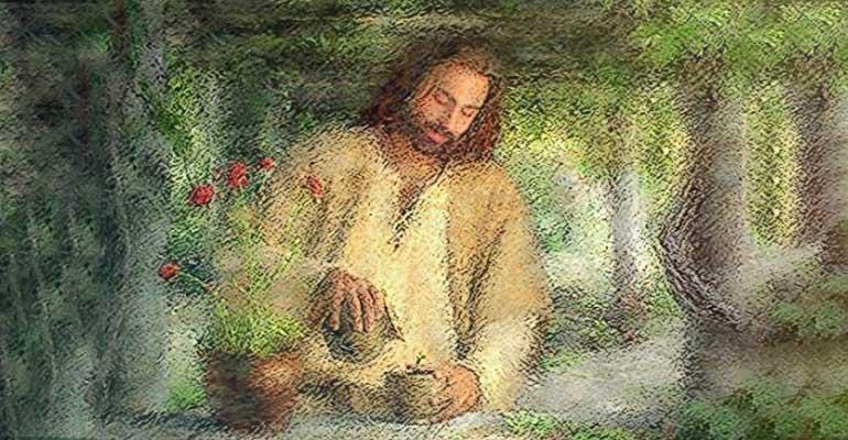 Jezus i rośliny