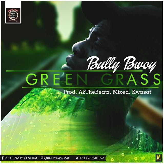 Bully Bwoy__Green Grass(Produced By AkaTheBeat & Mixed By Kwasat)