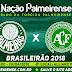 Jogo Palmeiras x Chapecoense Ao Vivo 29/04/2018 [Narração]