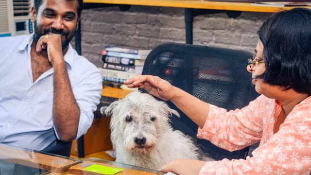 The HR Manager In This Indian Office Is A Dog?