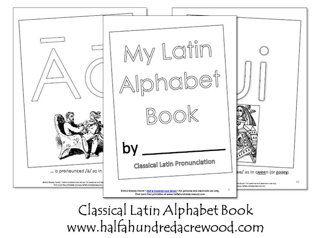 Half-a-Hundred Acre Wood: Latin Alphabet Coloring Book and