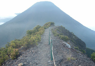 Jalur Pendakian Gunung Gede Pangrango Via Selabintana