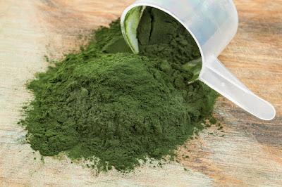 Tảo biển Spirulina cung cấp chất dinh dưỡng cho cơ thể