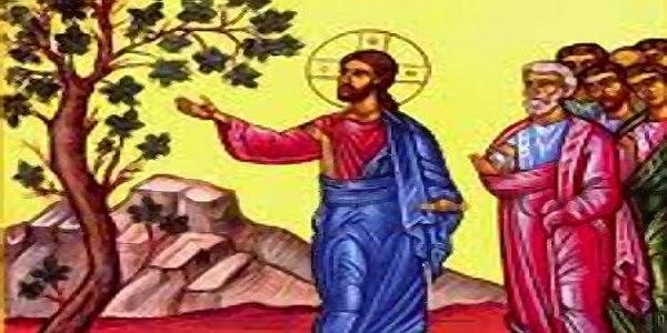 ΜΕΓΑΛΗ ΔΕΥΤΕΡΑ: ΙΩΣΗΦ ΤΟΥ ΠΑΓΚΑΛΟΥ ΚΑΙ Η ΑΚΑΡΠΗ ΣΥΚΙΑ