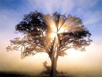 Resultado de imagem para Intimidade com o Espírito Santo