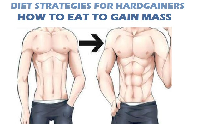 Muscle Building Diet Plan for Hardgainers