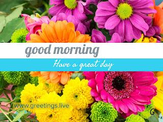 Fresh flowers morning greetings good morning