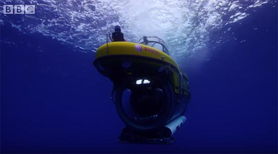 Tubarões atacam submarino que filmava documentário da BBC - img 1