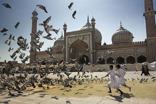Image Attribute: Girls chasing doves in the Jama Masjid the main mosque in Delhi India / Source: Wikimedia