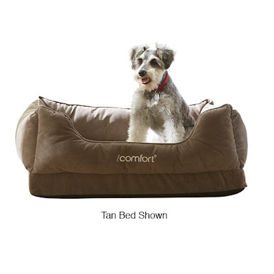 Enter to win a Serta pet bed