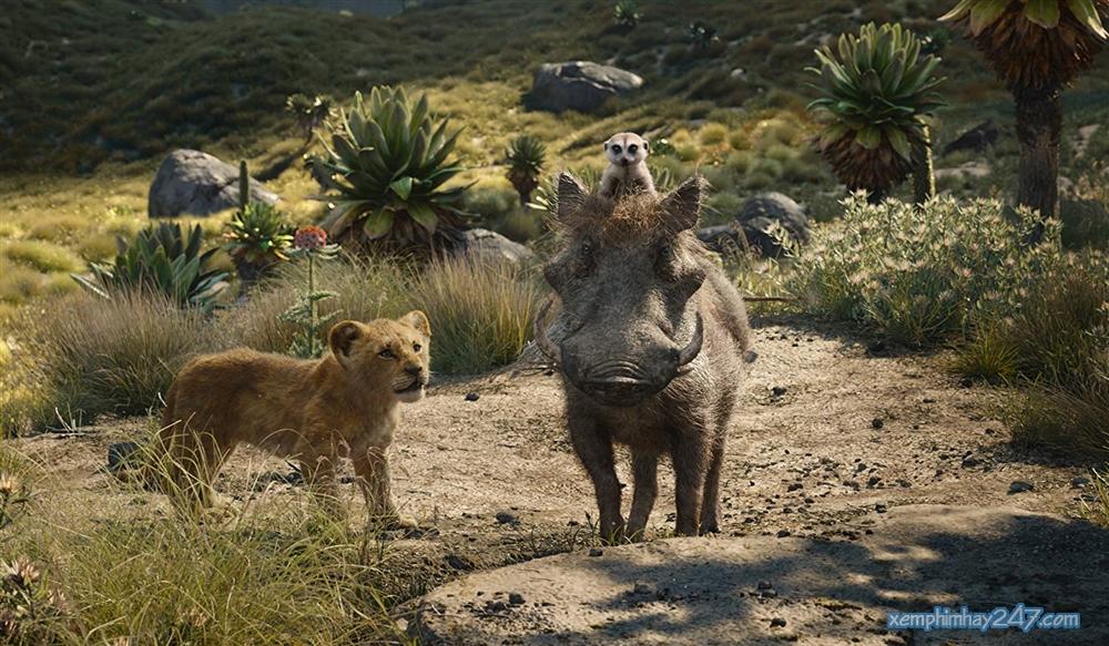 http://xemphimhay247.com - Xem phim hay 247 - Vua Sư Tử (2019) - The Lion King (2019)