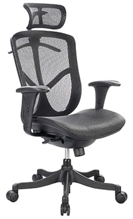 Fuzion Series Modern Office Chair by Eurotech