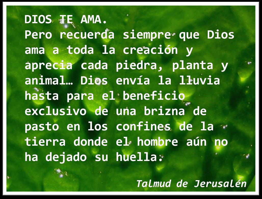 Frases De Amor Con Imagenes De Naturaleza: Lecciones Para Amar: Junio 2014