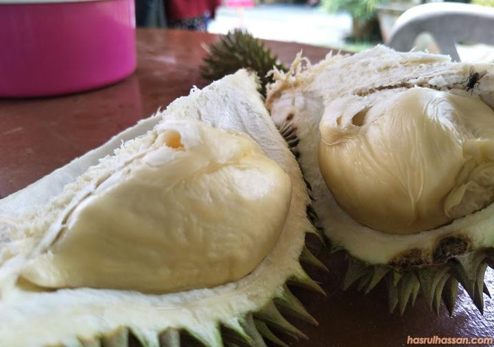 Fakta Mengenai Buah Durian
