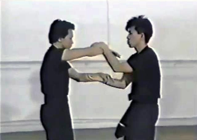 Wing Chun Chi Sau