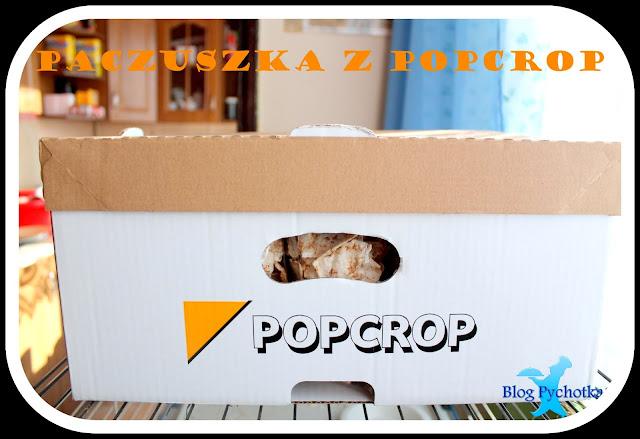 POPCROP