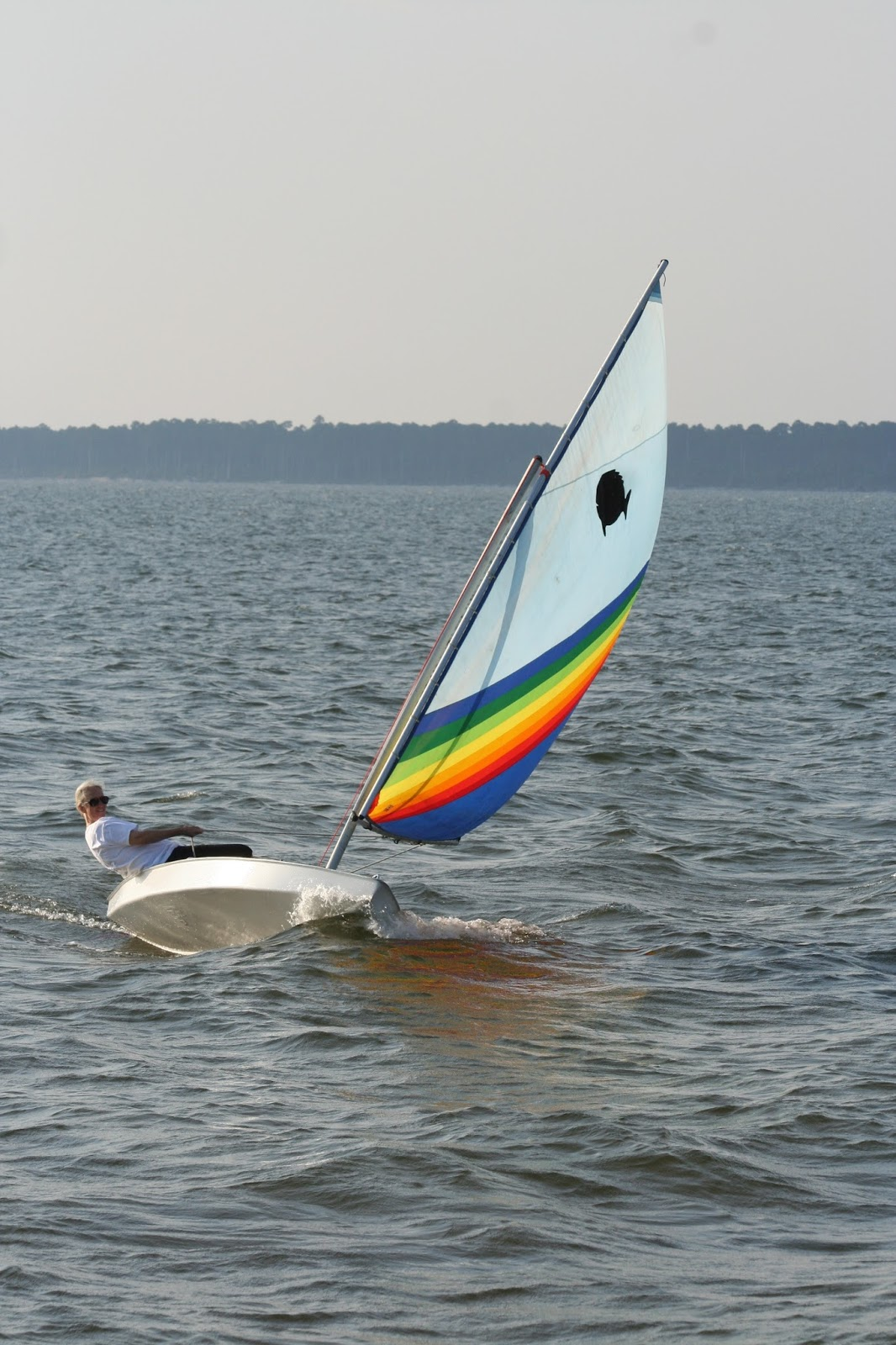 how to build a small sailboat