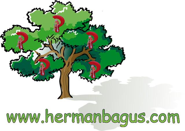 Pohon Masalah - Mengambil Pelajaran Dari Ilmu Keperawatan Hermanbagus Hermankampus