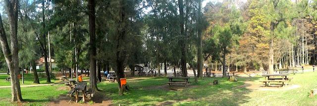 Horto Florestal - Área de Piquenique
