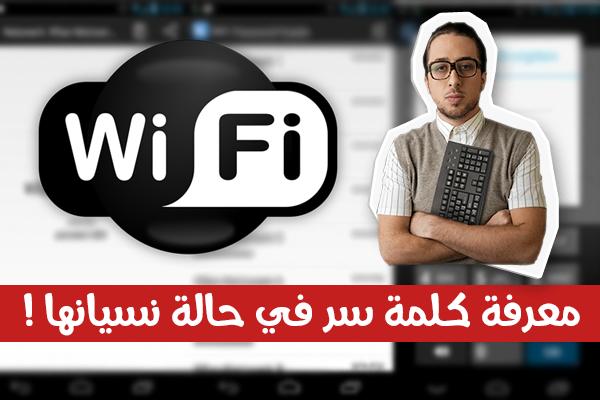 طريقة معرفة كلمة سر أي شبكة واي فاي في حالة نسيانها على جهازك الأندرويد!