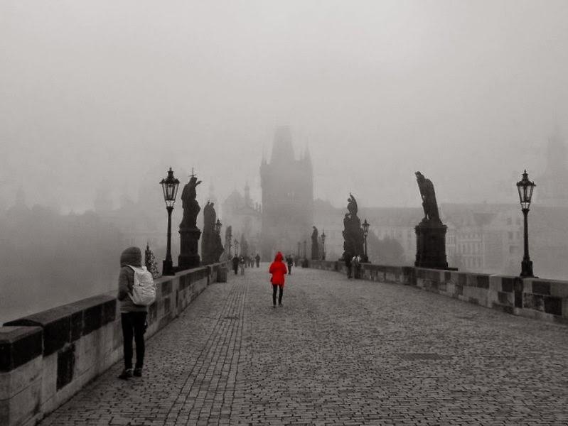 foggy-scenery-photo-14